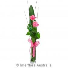 Flirt (pink)