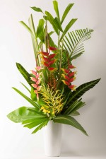Tropical statement piece which turns heads