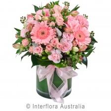La Dolce Vita (including vase)
