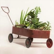 The Succulent Cart