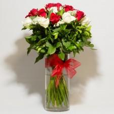 Red & White Roses