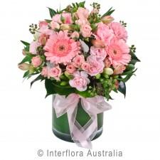 La Dolce Vita (pink, without vase)